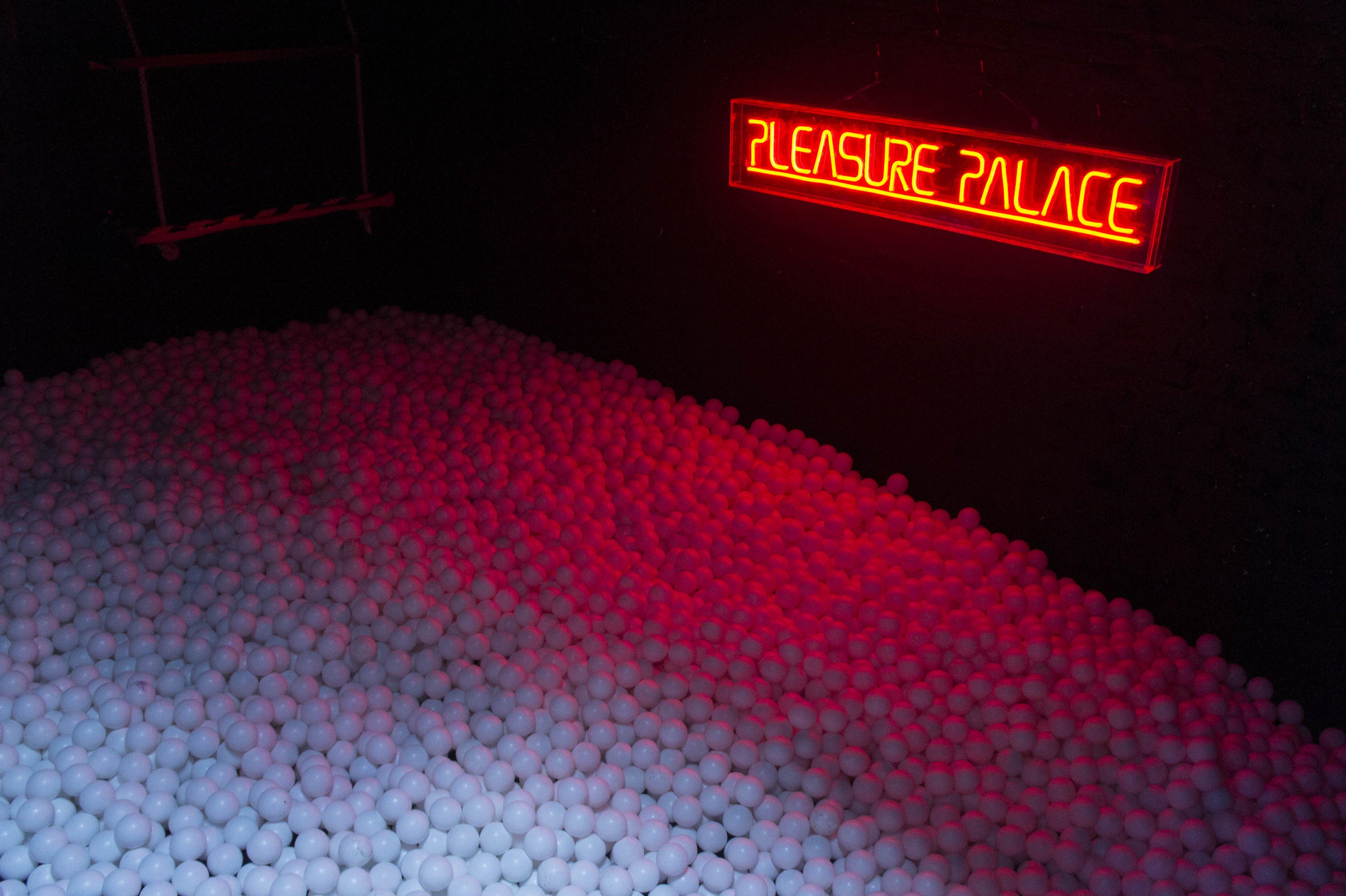 Punchy Ball Pit Pleasure Palace
